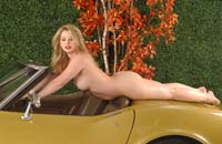 sunny lane corvette stingray